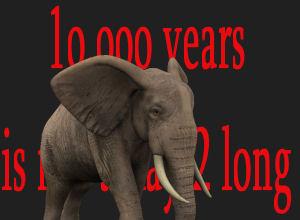 10,000 Years